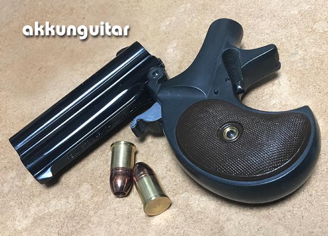 gun0803b.jpg