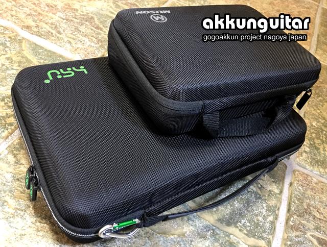 case-1031b.jpg